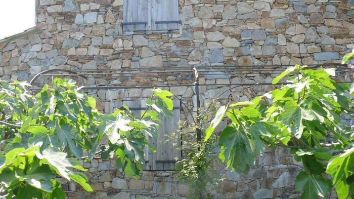Pergola French Ironwork Provence Traditional Contemporary Avignon La Forge